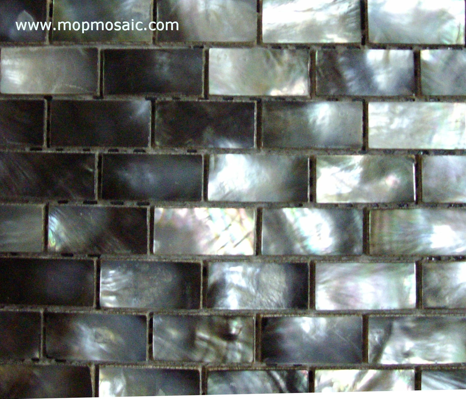 Retangle shape blacklip shell mosaic(15*25mm)