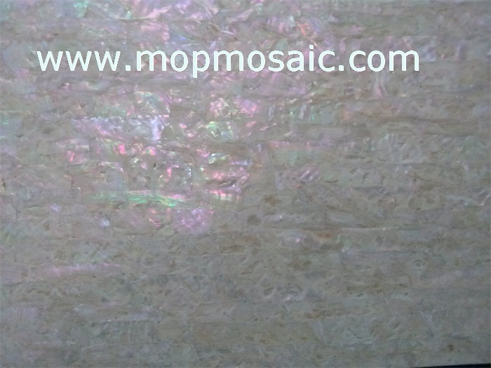Coarse grained korean abalone shell laminate