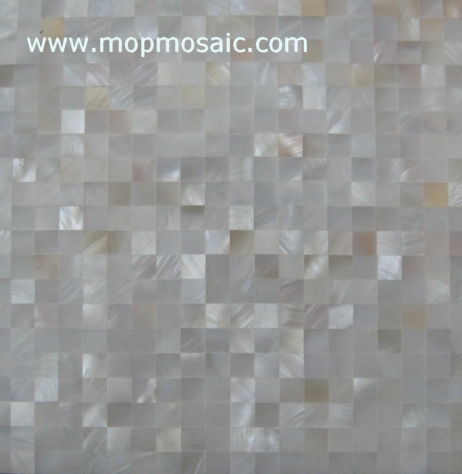 Freshwater shell wall tiles or shell panel