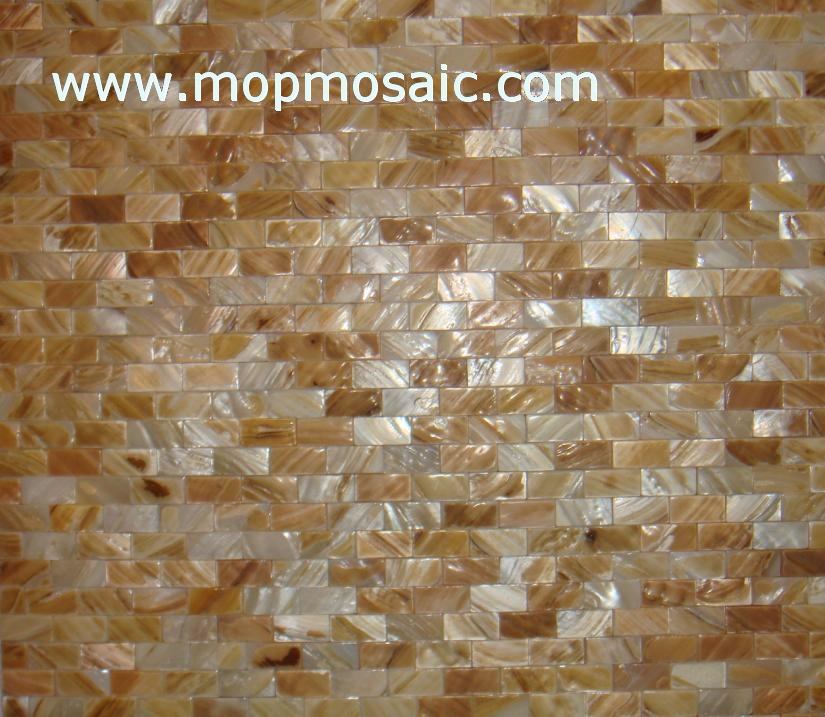 Dapple color shell mosaic tiles